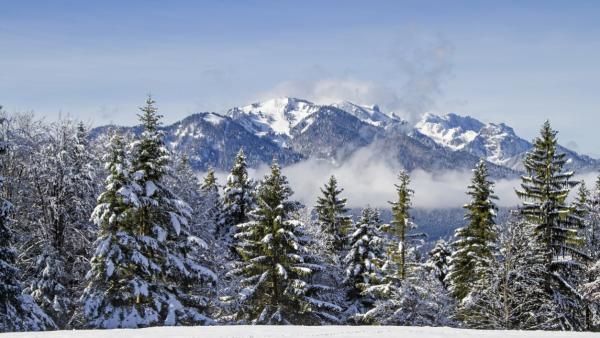 5 Duitse skigebieden die zeker de moeite waard zijn